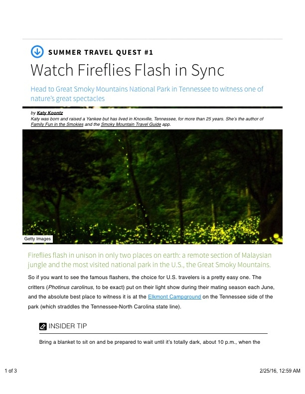 Watch Fireflies Flash in Synch